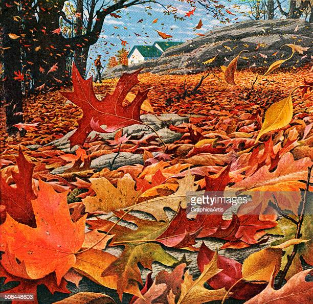 Vintage illustration of wind blowing colorful fall leaves in a field Screen print 1955