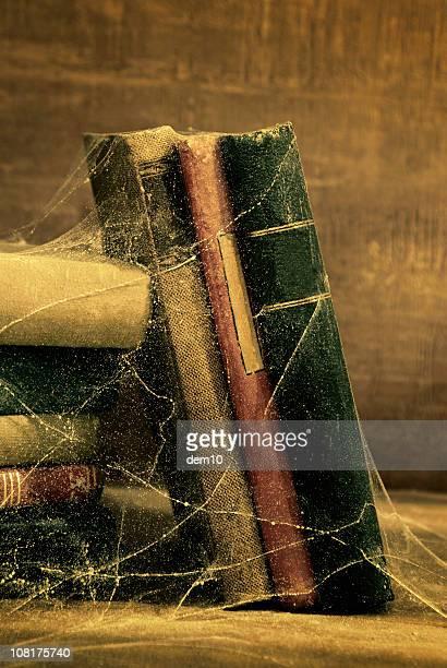 Vintage Old Books Covered in Cobwebs