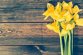 Vintage photo of daffodils on wooden background with copy space, easter greeting card