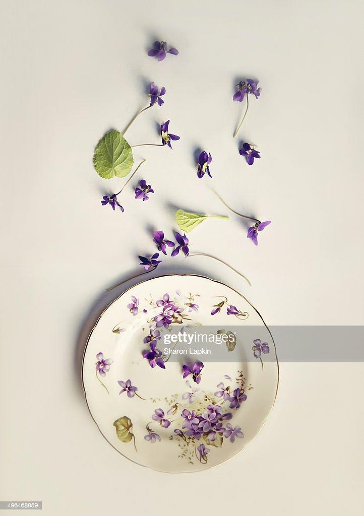 Vintage plate with violets