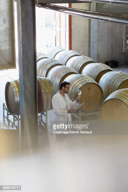 Vintner in lab coat examining white wine in winery cellar