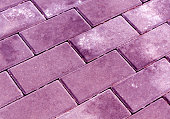 Violet color cobblestone pavement texture. Abstract background and texture for design.