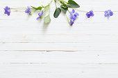 violet flowers on old wooden background
