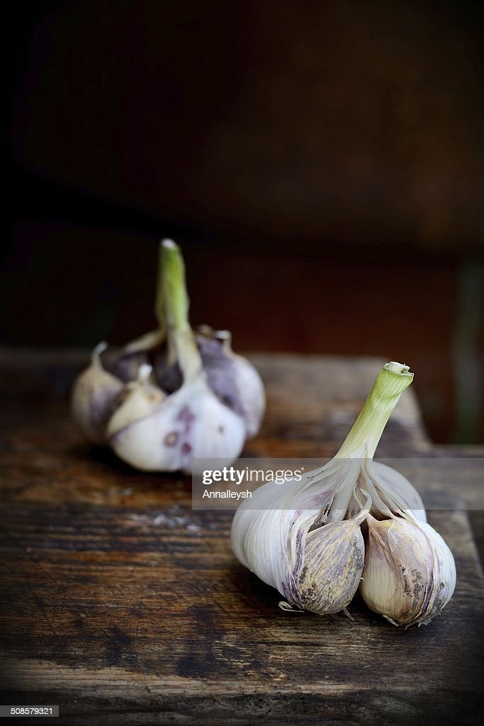 Violet  spring garlic rustic style : Stock Photo