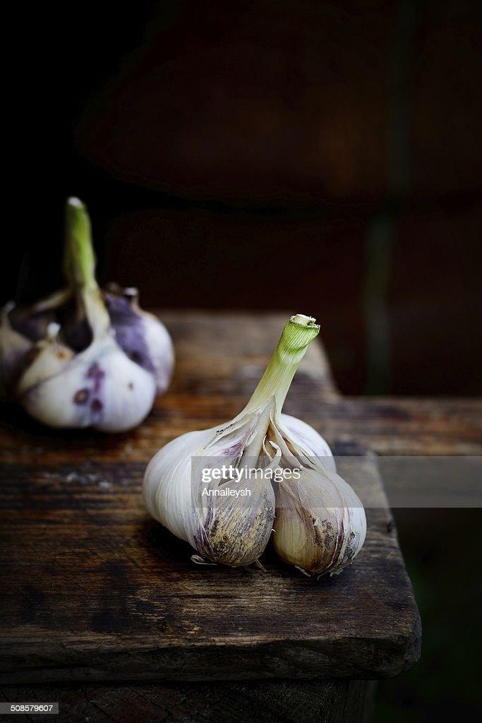 Violet  spring garlic rustic style : Stockfoto