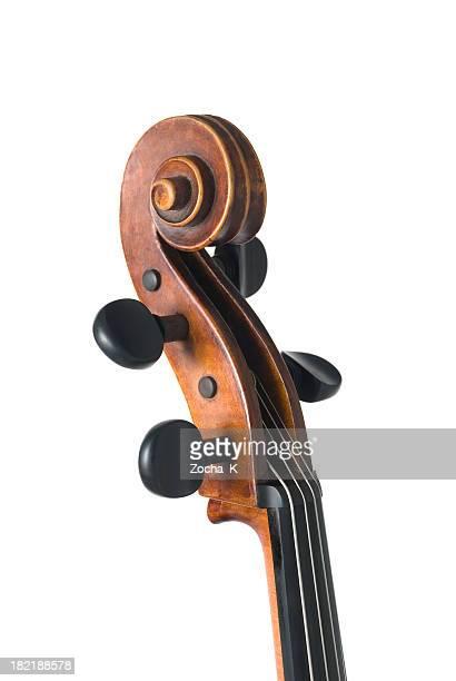 Violine isoliert auf weiss