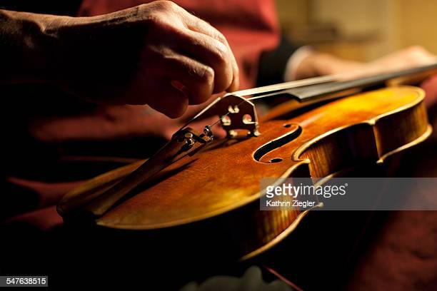 violin maker tuning an instrument, close-up