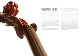 abstract violin on white background template