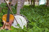 Violin with banjo, bluesgrass musical instrument Placed beside the tree on the farm. To play the rest of the workers.