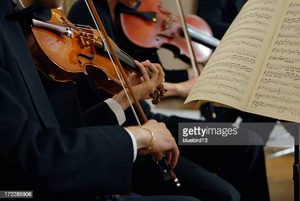 Violinists play in an orchestra