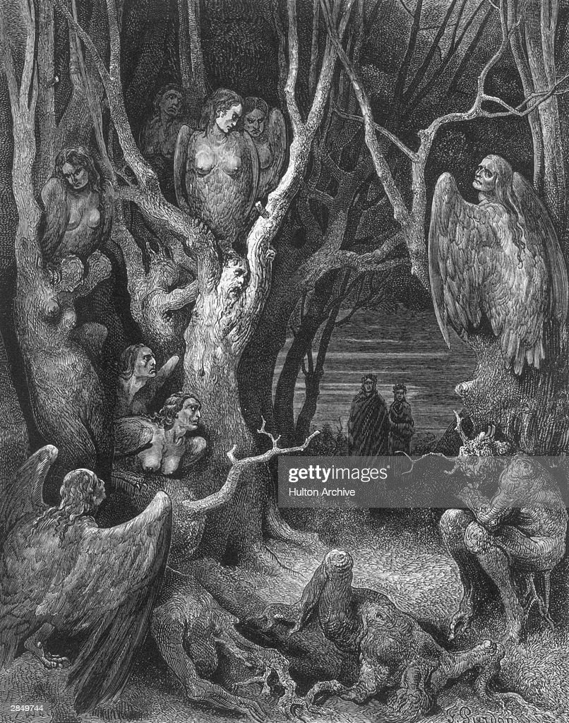 Virgil leads the author through a wood filled with Harpies and miserable souls transformed into trees. An engraving by Gustave Dore, illustrating Canto XIII of Dante's Inferno, written circa 1310.