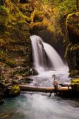 Autumn color along a small waterfall on Virgin Creek in Girdwood Alaska.