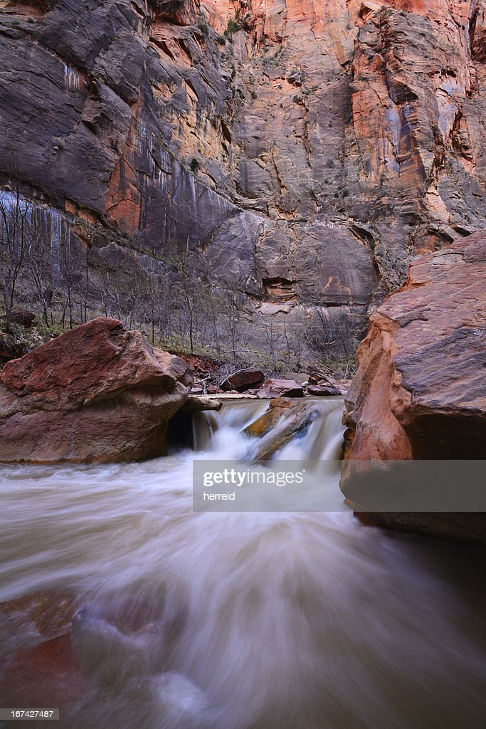 Virgin River in Zion National Park : Stock Photo