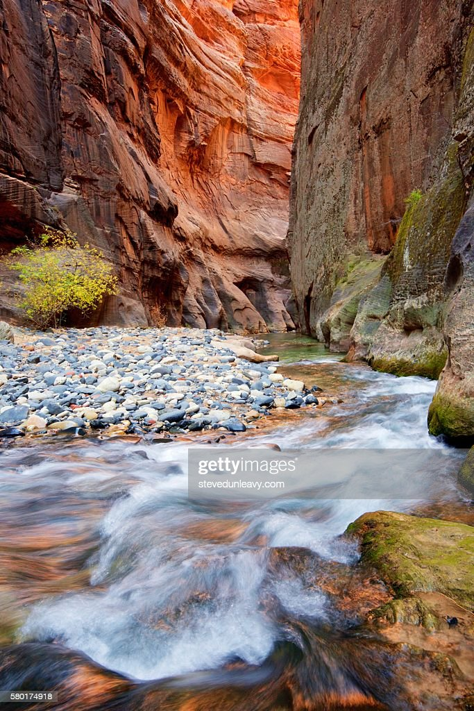 Virgin River Narrows