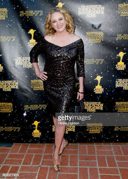 Virginia Madsen attends the 43rd Annual Saturn Awards at The Castaway on June 28 2017 in Burbank California