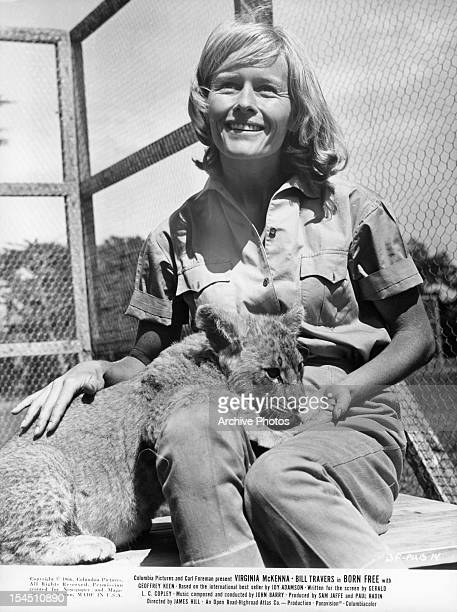 Virginia McKenna pets a lion cub in a scene from the film 'Born Free' 1966