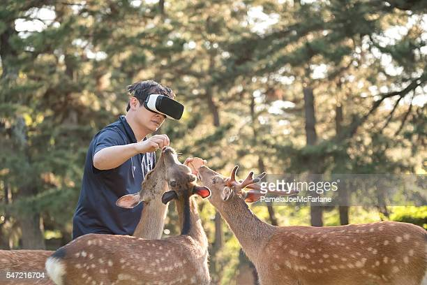 Virtual Reality Experience, Man Feeding Deer in Forest Wearing Headset