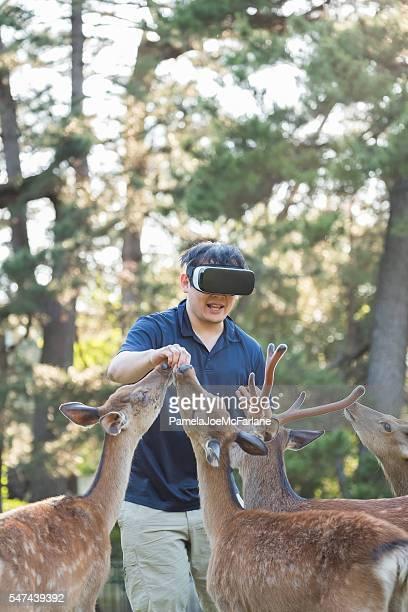 Virtual Reality Headset, Happy Man Enjoying Feeding Deer in Forest