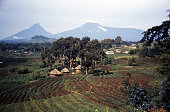 Virunga Mountains and African Agricultural Landscape mid-1980s Rwanda Africa