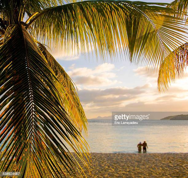 Visiting Guadeloupe