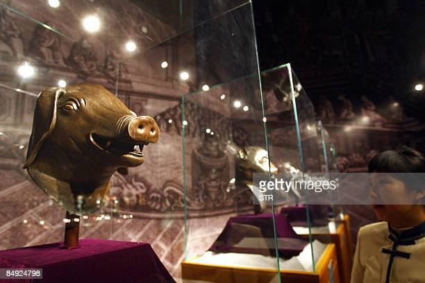 A visitor admires four of the 18th century Qing dynasty bronze fountainheads the Pig the Monkey the Tiger and the Buffalo owned by China's Poly Group...