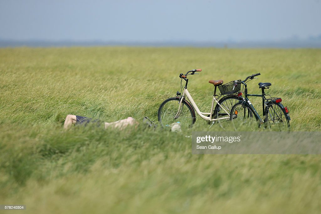 A visitor lies in the grass next to bicycles at a meadow on the Hamburger Hallig peninsula on July 19, 2016 near Bordelum, Germany. Hamburger Hallig is a protected national park and a favorite destination for vacationers along Germany's North Sea coast. Many Germans, unsettled by the recent terror attacks in countries like France and Turkey, are choosing to vacation in Germany this summer.