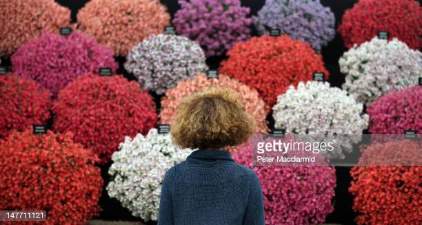 A visitor looks at a display in the Floral Marquee at The Hampton Court Palace Flower Show on July 2 2012 in London England The 23rd Hampton Court...