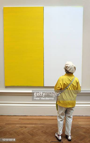 A visitor looks at a painting called 'Untitled No 39' by Callum Innes at The Royal Academy Summer Exhibition on June 9 2010 in London England The RA...