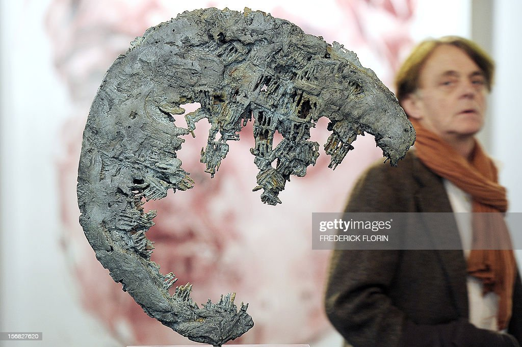 A visitor looks at a sculpture entitled 'Carcasse' (carcass) by Egyptian-born artist Nisa Chevenement on the opening day of the 'ST-ART' European contemporary art fair on November 22, 2012 in Strasbourg, eastern France. The event takes place between November 23 and November 26, 2012.
