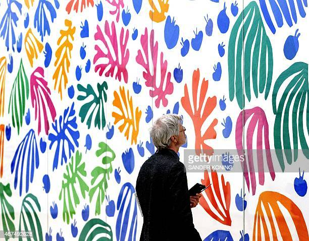 A visitor looks at La Perruche et la Sirene by French artist Henry Matisse at the previewing of the exhibition 'De Oase van Matisse' at the Stedelijk...