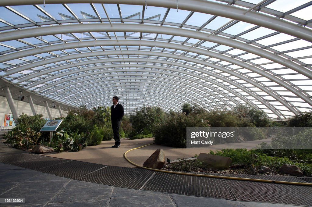 A visitor looks at plants inside the Norman Foster designed Great Glasshouse at the National Botanic Garden of Wales on March 5, 2013 near Carmarthen, Wales. As the weather improves, staff at the gardens - which opened in 2000, stretches over 500 acres and contains the largest single span glasshouse in the world - are gearing up for the arrival of the spring season.