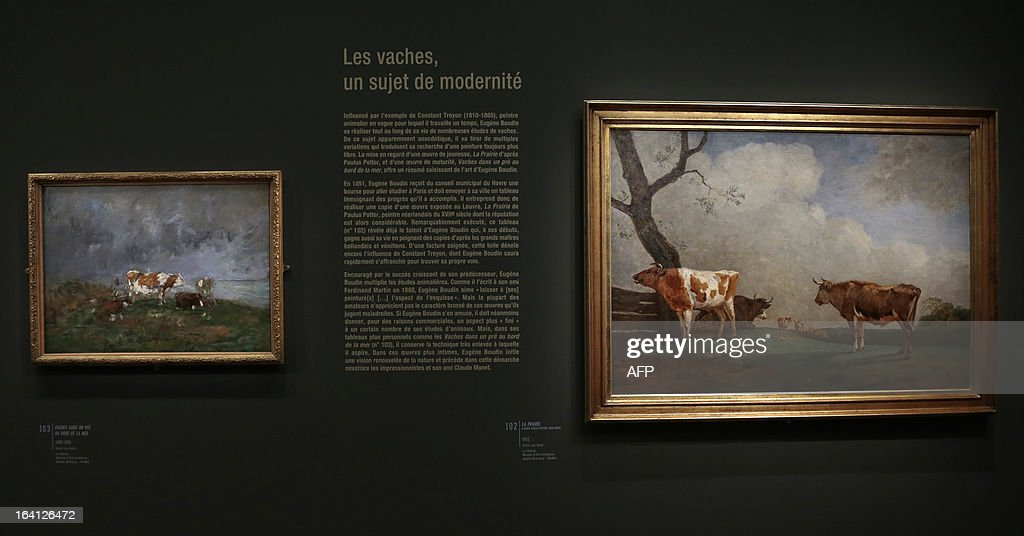 A visitor looks at the paintings, ' vaches dans un pre au bord de l'eau' (L) et 'la prairie, d'apres Paulus Potter (1625-1654)' on March 20, 2013 at the Jacquemart-Andre museum during the inaugural visit to the French painter Eugene Boudin's (1824 - 1898) exhibition running from March 22 to July 22, 2013.