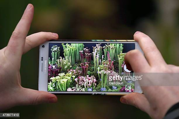 A visitor photographs a garden display on the first public day of the Chelsea Flower Show on May 19 2015 in London England The show which has run...