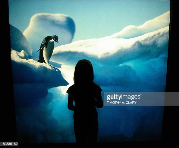National aquarium stock photos and pictures getty images Aquarium in baltimore