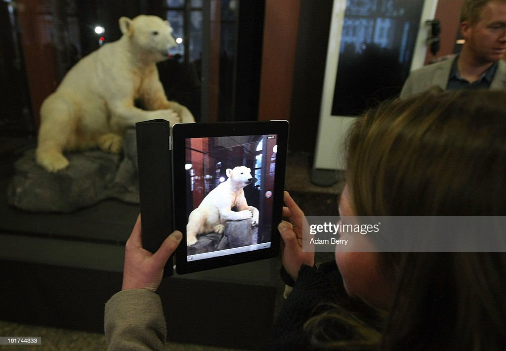 A visitor uses an Apple iPad to take a picture of a model of Knut the polar bear, featuring his original fur on display in the Natural History Museum (Naturkundemuseum) on February 15, 2013 in Berlin, Germany. Though Knut, the world-famous polar bear from the city's zoo abandoned by his mother and ultimately immortalized as a cartoon film character, stuffed toys, and more temporarily as a gummy bear, died two years ago, he will live on additionally as a partially-taxidermied specimen in the museum. Until March 15, the dermoplastic model of the ursine celebrity will be on display before it joins the museum's archive, though visitors can see it once again as part of a permanent exhibition that begins in 2014.