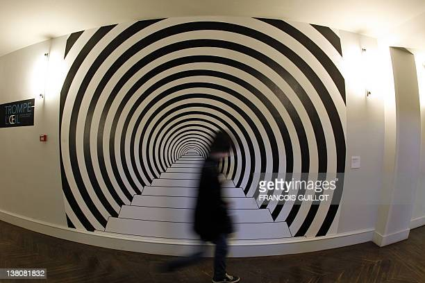 A visitor walk along the piece of art 'Down The Rabbit Hole' by desigher Rasch on February 2 2012 at Arts Decoratifs museum in Paris during the...