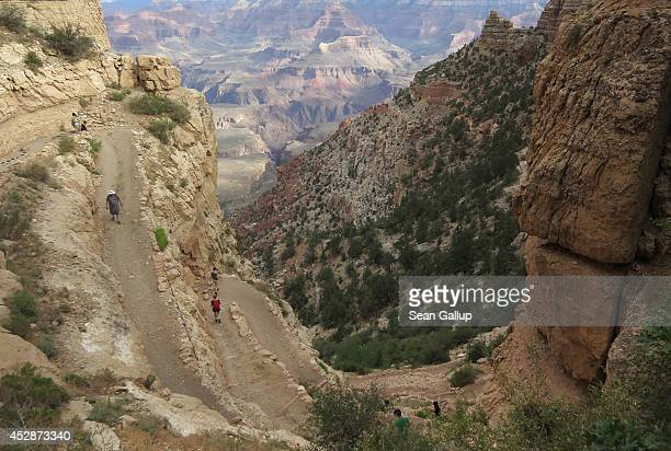 A visitor walk down the South Keibab Trail at the Grand Canyon South Rim on July 13 2014 at Grand Canyon National Park Arizona The Grand Canyon is...