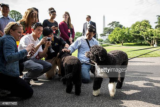 Visitors and members of the media take pictures of White House family dogs Bo and Sunny on the South Lawn of the White House on June 6 in Washington...