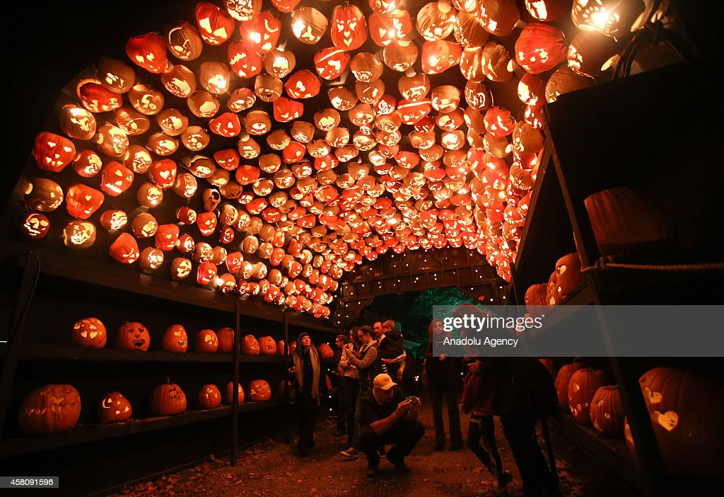 Visitors are seen inside a tunnel made of pumpkins at 'The Great Jack O'Lantern Blaze' spectacle which features more than 5000 handcarved illuminated...