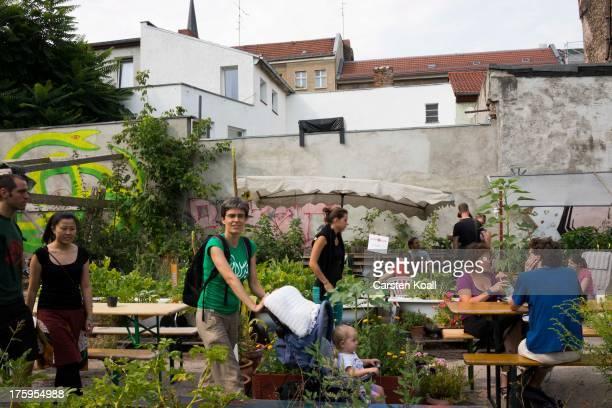 urban gardening berlin stock fotos und bilder getty images. Black Bedroom Furniture Sets. Home Design Ideas