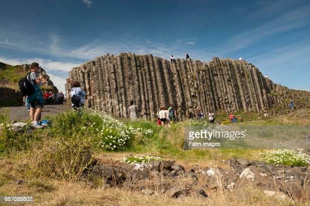 Visitors at the Giants Causeway Northern Ireland