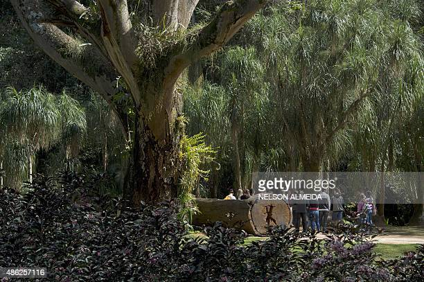 Visitors at the Inhotim Centre for Contemporary Art in Brumadinho some 60 km from Belo Horizonte southeastern Brazil on August 11 2015 Considered the...