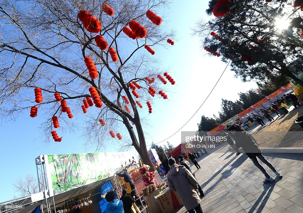 Visitors gather at the Ditan park temple fair in Beijing on January 30, 2014, on the eve of the Lunar New Year. Over a billion Chinese in China and millions more all over the world will be celebrating the Lunar New Year, known as the Spring Festival in China.