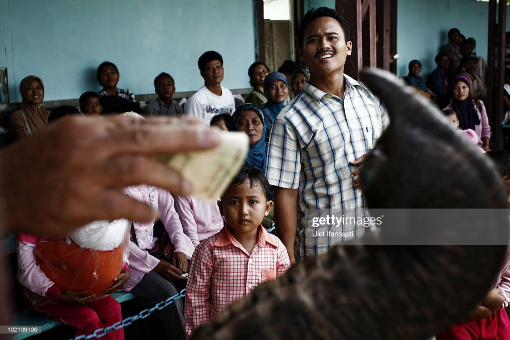 Visitors give donations to Sumatran trained elephant during a circus performance, aside from their role as patrol elephants searching for illegal loggers who are destroying the habitat of Sumatran elephants on June 13, 2010 in Way Kambas, Lampung, Indonesia. Sumatran elephants are becoming increasingly endangered due to the destruction of their habitat by logging, palm oil and rubber industries. This has resulted in the animals increasingly invading local villages, at times trampling locals to death and destroying homes and crops, as they return to land which was once their habitat and has now been settled by humans following logging. Villages in Lampung saw 327 elephants invade in a three month period during 2009, causing death and destruction as their own habitat continues to be threatened and depleted. Forest rangers and activists from the Wildlife Conservation Society are trying various methods to return them to the forests, including training them to keep away, along with hunting for illegal loggers. The current population for the mammals is estimated at 2000 to 2700.