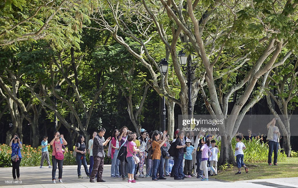 Visitors in large group tour at the Elizabeth Walk park in Singapore on January 29, 2013. Asia's tourism industry must prepare for major changes in the next 20 years, including a projected boom in travel by senior citizens and female business executives, a study said January 29 .