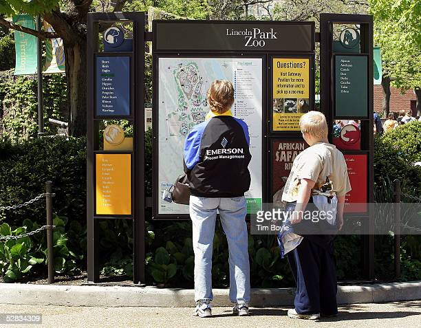 Visitors look at information near an entrance inside Lincoln Park Zoo May 16 2005 in Chicago Illinois Authorities are investigating the recent deaths...