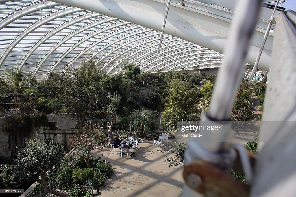 Visitors look at plants inside the Norman Foster designed Great Glasshouse at the National Botanic Garden of Wales on March 5, 2013 near Carmarthen, Wales. As the weather improves, staff at the gardens - which opened in 2000, stretches over 500 acres and contains the largest single span glasshouse in the world - are gearing up for the arrival of the spring season.