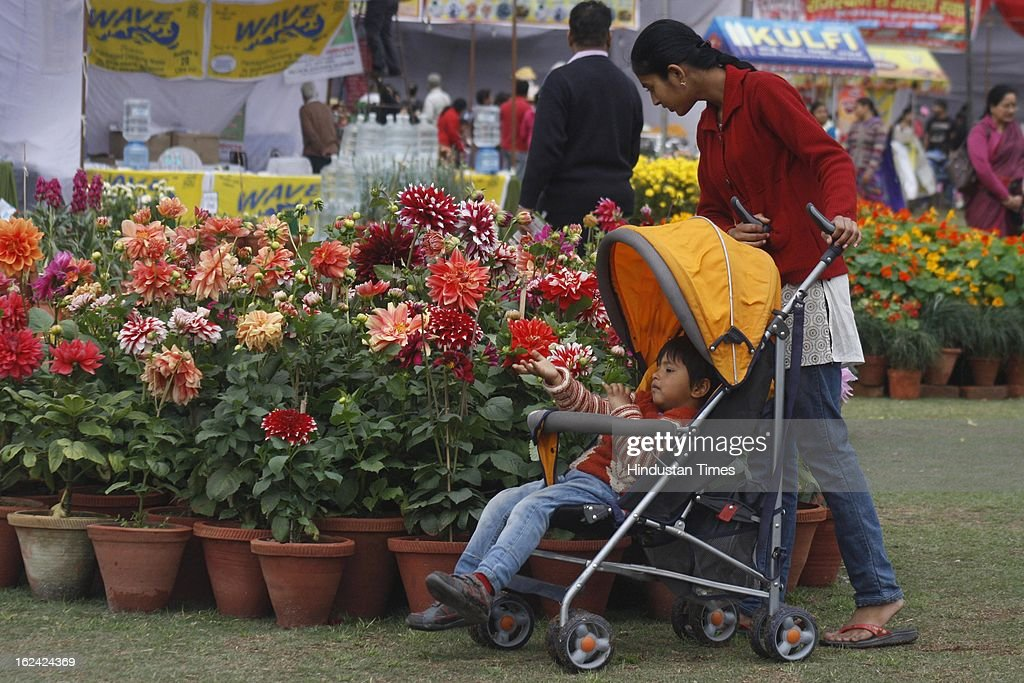 Visitors look at the plants on the 2nd day of the 27th Flower Show organised by 'The Floriculture Society of Noida' at Sector 21A on February, 23, 2013 in Noida, India. The annual flower show was opened for general public on Feb. 22 & will conclude on Feb. 24.