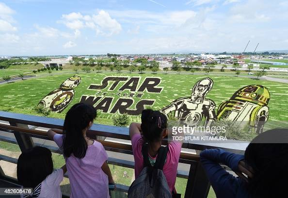 Visitors look at the Star Wars rice paddy with film characters BB8 C3PO and R2D2 in Inakadate village in Aomori prefecture on August 1 2015 The Star...
