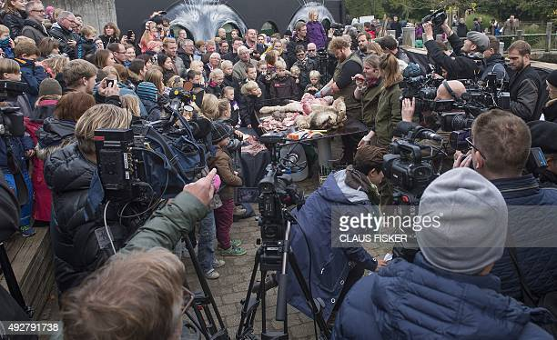 Visitors look on as zoo employees work on the dissection of a lion October 15 2015 at the zoo in Odense Denmark 'The reason we are dissecting it is...